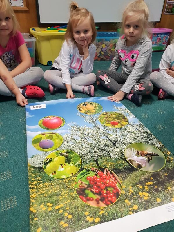 """Projekt edukacyjny """"Owoce"""""""